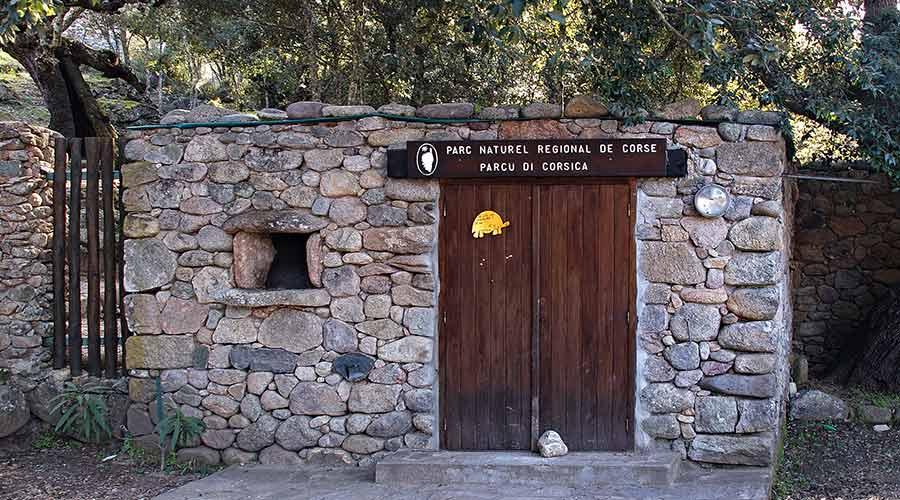 village des tortues Moltifao